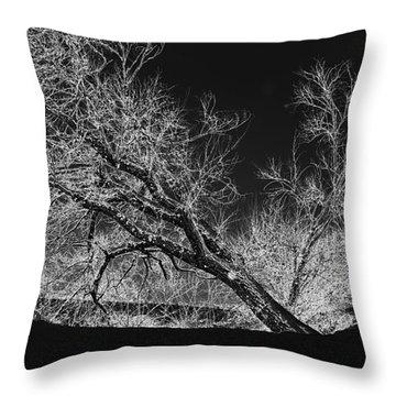 Starkly Throw Pillow by Betty LaRue