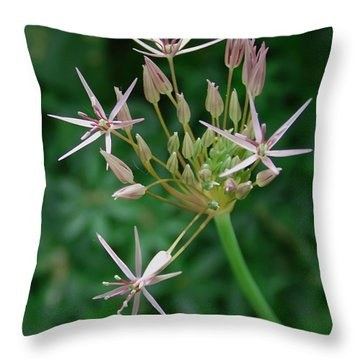 Starlight Throw Pillow by Aimee L Maher Photography and Art Visit ALMGallerydotcom