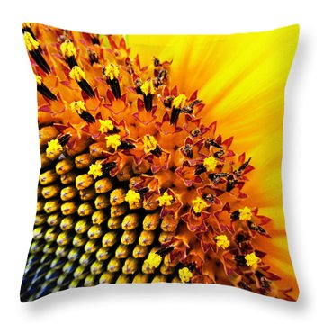Stars Of The Sun Throw Pillow