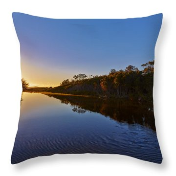 Start Of The Day Throw Pillow