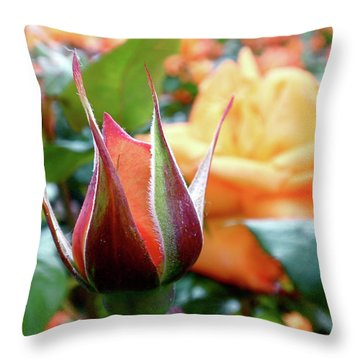 Starting Out Throw Pillow