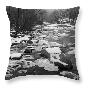 Starting To Freeze  Throw Pillow