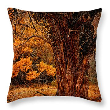 Throw Pillow featuring the photograph Stately Oak by Priscilla Burgers