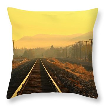 Throw Pillow featuring the photograph Stay On Track by Lynn Hopwood