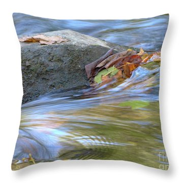 Throw Pillow featuring the photograph Steadfast by Jane Ford