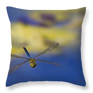 Throw Pillow featuring the photograph Stealth Chopper by Gary Holmes