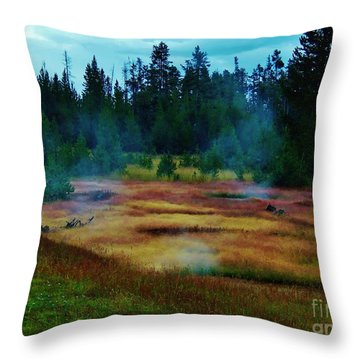 Steam Marsh Throw Pillow