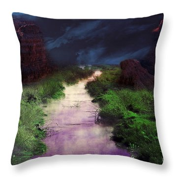 Throw Pillow featuring the photograph Steamy Creek by Gunter Nezhoda