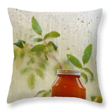 Steamy Window Throw Pillow by Pamela Patch
