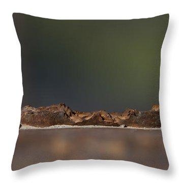 Steel Landscape Throw Pillow