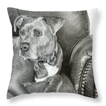 Staffordshire Throw Pillows
