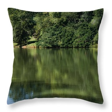 Steele Creek Park Reflections Throw Pillow