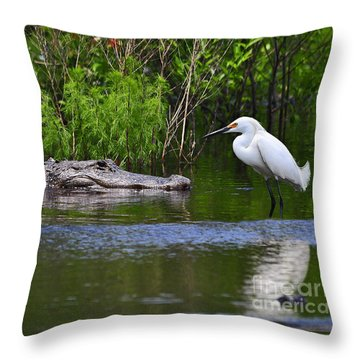 Steely Snowy Throw Pillow by Al Powell Photography USA