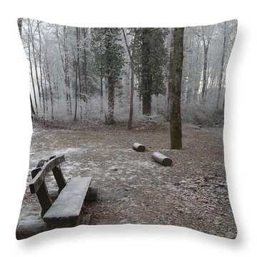 Throw Pillow featuring the photograph Steep And Frost - 3 by Felicia Tica