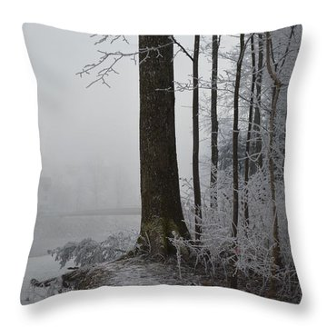Steep And Frost Throw Pillow by Felicia Tica