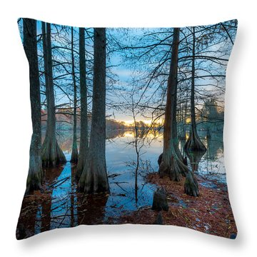 Steinhagen Reservoir Vertical Throw Pillow