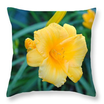 Stella De Oro Daylily Throw Pillow
