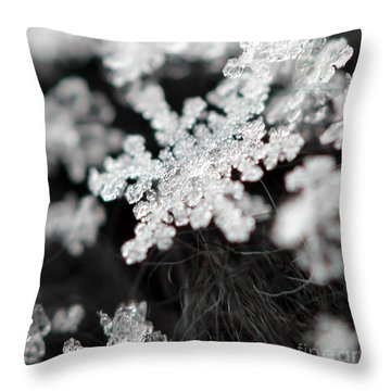 Stellar Dendrite Throw Pillow