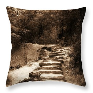 Step Into Nature Throw Pillow by Aron Kearney