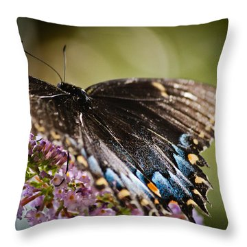 Step Lightly Throw Pillow