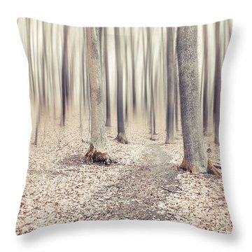 Steppin' Through The Last Days Of Autumn Throw Pillow by Hannes Cmarits
