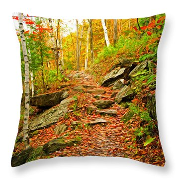 Stepping Stones Throw Pillow by Bill Howard