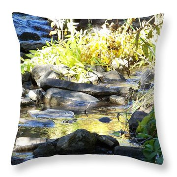 Stepping Stones Throw Pillow by Sheri Keith
