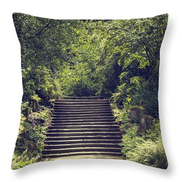 Steps Throw Pillow by Amanda Elwell