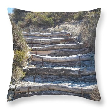Steps In The Woods Throw Pillow by George Katechis
