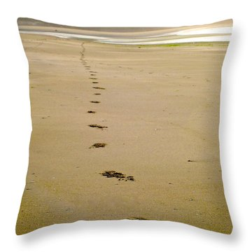 Steps To Inchydoney Throw Pillow by Suzanne Oesterling