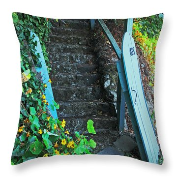 Steps To Somewhere Throw Pillow by Connie Fox