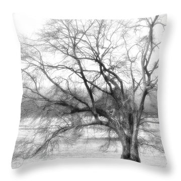 Sterling Fog Throw Pillow