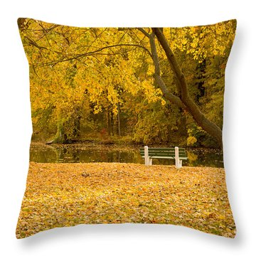 Stewart Park Ithaca Throw Pillow
