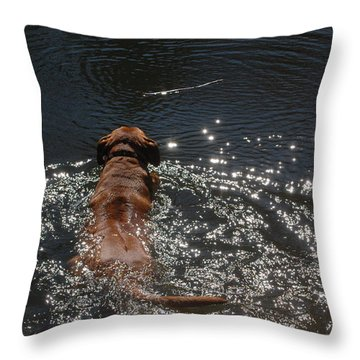 Throw Pillow featuring the photograph Stick by Mim White