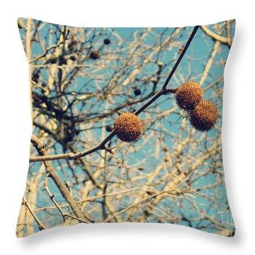 Sticks And Pods Throw Pillow