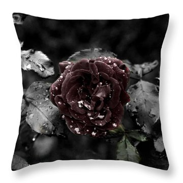 ...still A Rose Throw Pillow