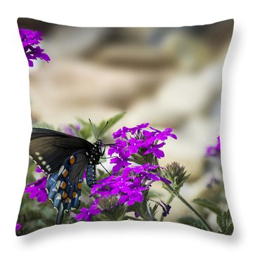 Still Beautiful Swallowtail Throw Pillow