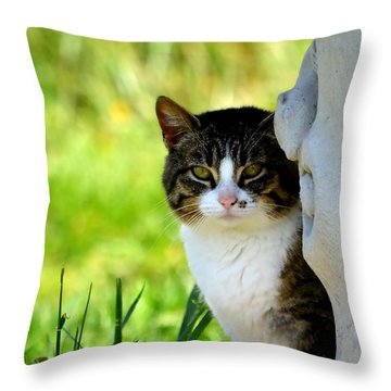 Still Throw Pillow by Deena Stoddard