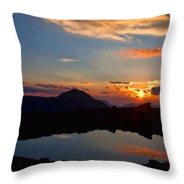 Still Throw Pillow by Jim Garrison