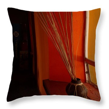Throw Pillow featuring the photograph Still Life In Baja by Alan Socolik