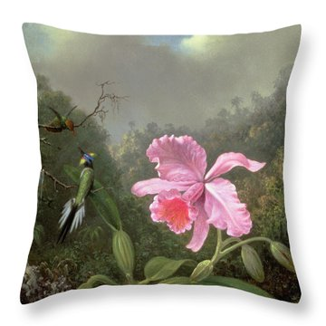 Still Life With An Orchid And A Pair Of Hummingbirds Throw Pillow by Martin Johnson Heade
