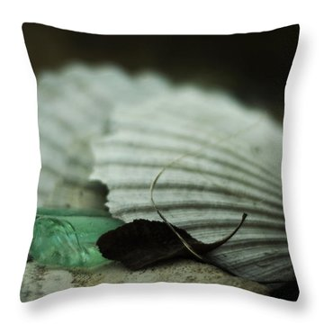 Still Life With Fossil Shells And Beach Glass Throw Pillow