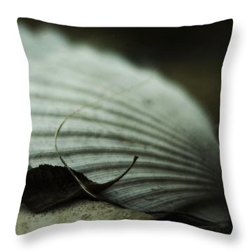 Still Life With Fossil Shells And Beach Glass Throw Pillow by Rebecca Sherman