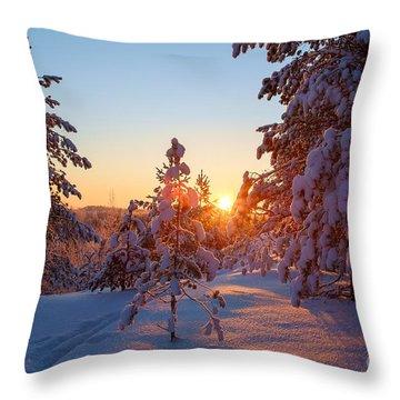 Still Standing In The Winter Sunset Throw Pillow