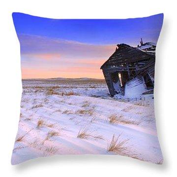 Throw Pillow featuring the photograph Still Standing by Kadek Susanto