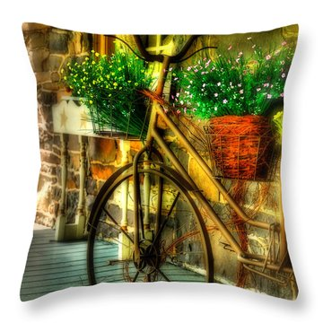 Throw Pillow featuring the photograph Still Useful by Lois Bryan