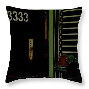 Still Waiting At 3333 Throw Pillow by Lin Haring
