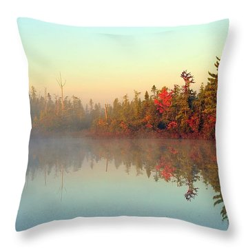 Still Water Marsh Throw Pillow by Terri Gostola