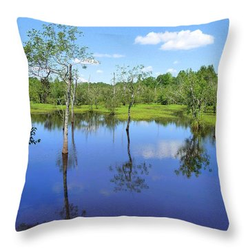 Throw Pillow featuring the photograph Still Waters by Jim Whalen