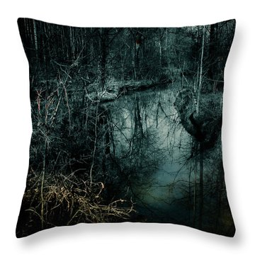 Still Waters Run Deep Throw Pillow by Jessica Brawley